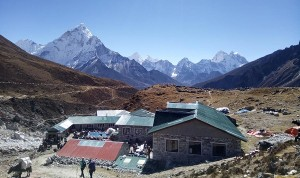 Travel and tour experience in Nepal
