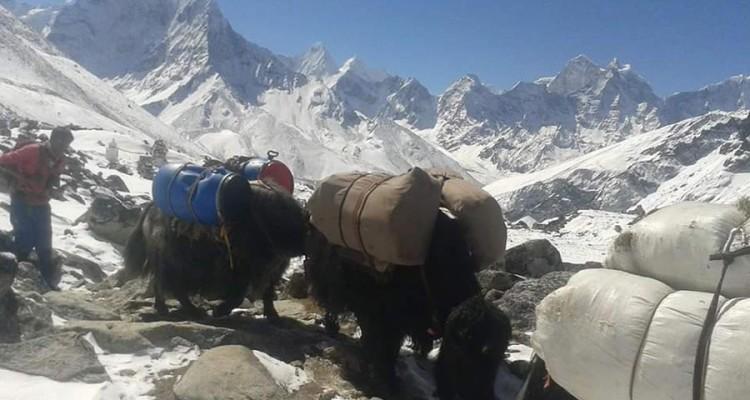 high-pass-trekking