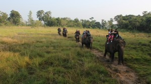 Can I go myself into Chitwan National Park