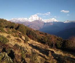 Royal Annapurna trekking