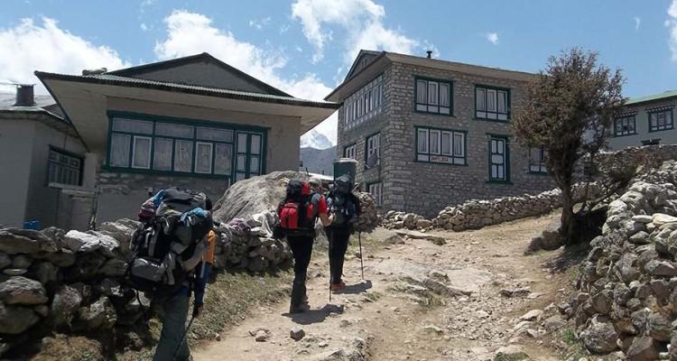 Mountain Life and Trekking