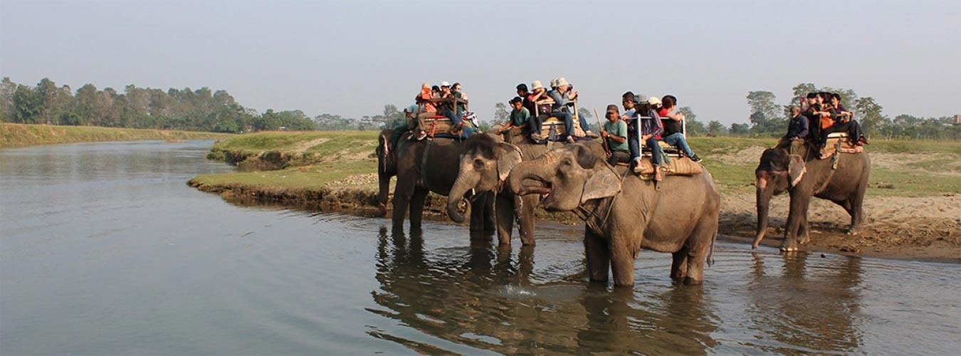 Pokhara and Chitwan Tour