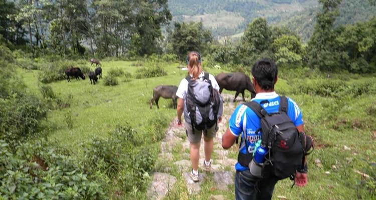 chisapani-nagarkot-hiking