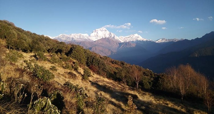 Mt.-Dhaulagiri-view-from-poonhill
