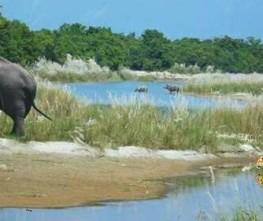 Bardia Wildlife Safari Tour