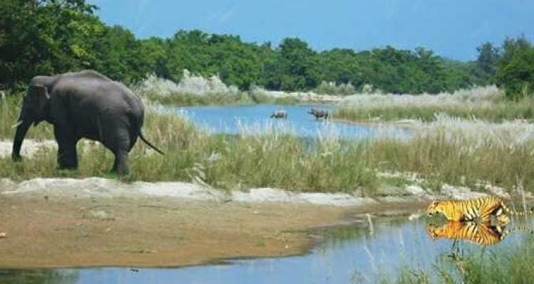 Bardia-jungle-safari - Copy