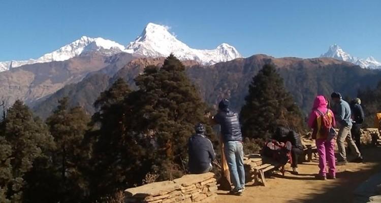 Poon-hill-trekking
