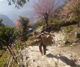 Sarangkot Hiking from Pokhara