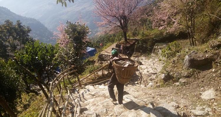 Sarangkot Hiking