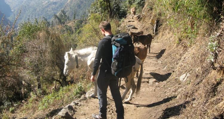 Trekking Choices in Nepal