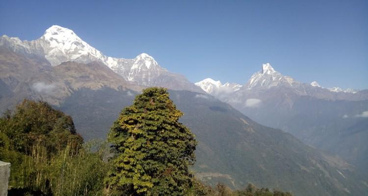 Ghorepani Poon hill trek during October and November
