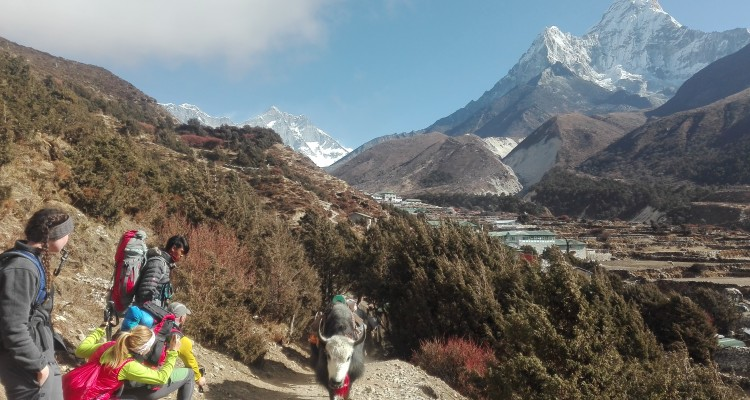 Everest short trek with family