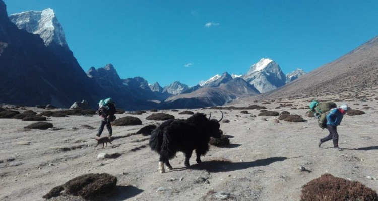 Answers to your Everest base camp trek Questions