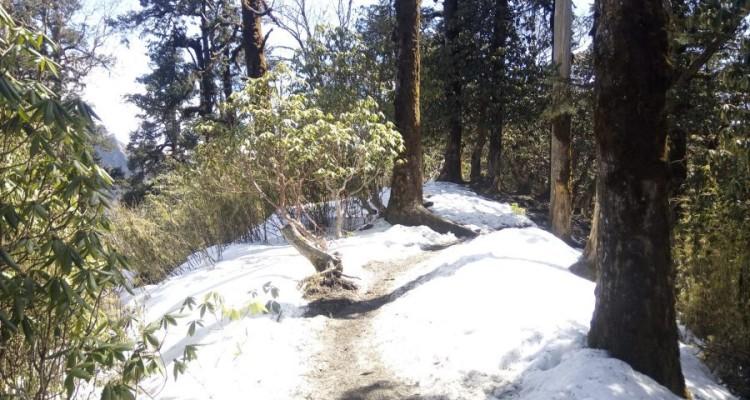Ghorepani Pun hill trek 2, 3 & 4 days Itinerary